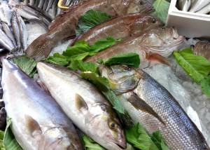 Рыбный рынок в Аланье, один из прилавков