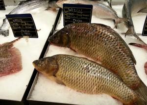 Рыбный прилавок в турецком Метро, Аланья